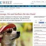 Die Welt Reiki Massage Hund