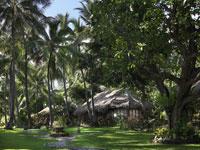 Gaia Oasis